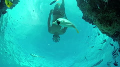 SLOW MOTION UNDERWATER: Man snorkeling exotic reef with tropical fish - stock footage