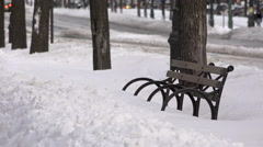 Eastern Parkway Bench in the Snow. Brooklyn in the Snow. Stock Footage