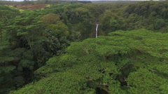 Flight over rainforest and waterfall - Akaka falls, Big Island, Hawaii Stock Footage