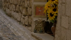 Decorations in front of Atelier Danielle Alarcon Dalvin in Saint-Paul-de-Vence Stock Footage