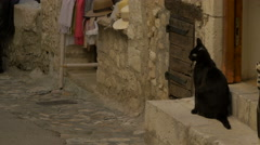 Black cat sitting near a souvenir shop and cleaning herself, Saint-Paul-de-Vence Stock Footage
