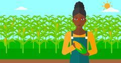 Farmer holding corn Stock Illustration