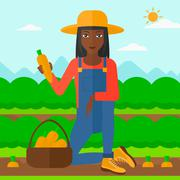 Stock Illustration of Farmer collecting carrots