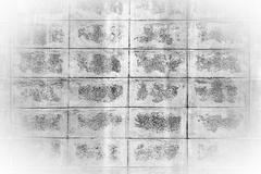 Black and white mortar block wall pattern. Stock Photos