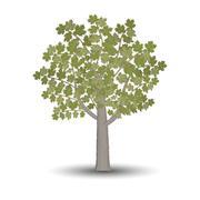 Stock Illustration of maple tree isolated on white background.