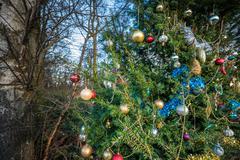 Park Christmas Decorations Stock Photos