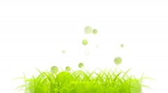 Abstract summer grass video animation Stock Footage