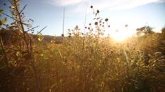 Cusco-Sonnenuntergang Stock Footage