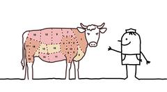 Hand drawn cartoon characters - butcher & graphic beef Stock Illustration