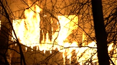Zoom Out Of Structure Fire Through Trees Stock Footage