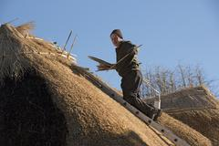 Thatcher working on the ridge of a thatched roof with hazel wood spars Stock Photos