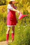 woman watering plants in garden - stock photo