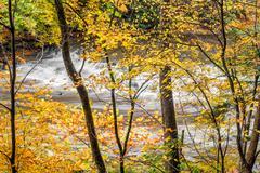 Autumn on the Chagrin - stock photo