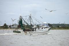 Commercial fishing vessel at work Stock Photos