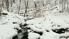 Watercourse in winter forest Stock Footage