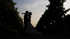 Married couple embrace and flirt backlight between two rows of vines. Stock Footage