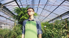Handsome young gardener in a greenhouse. Slow motion Stock Footage