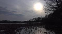 4k Hidden marshland nature reserve Viehmoor cold winter season Stock Footage
