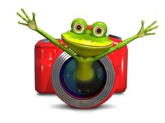 Frog in the camera - stock illustration