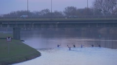 Men Paddle a Canoes Under Bridge Height Limit Sign City on River Bank Glide Stock Footage