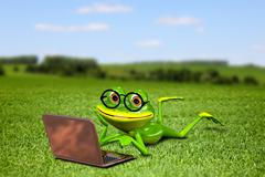 Frog with a laptop on the grass - stock illustration