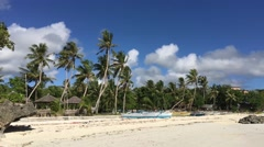 Catamaran Boats and palmtrees Stock Footage