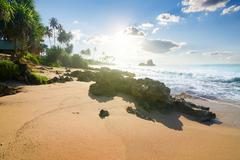 Stones on tropical beach Stock Photos