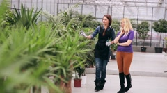 Gardener explains to the young girl about plants - stock footage