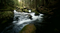 Panther Creek Flowing in a Dark Forest Stock Footage