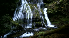 View of Panther Creek Falls Stock Footage