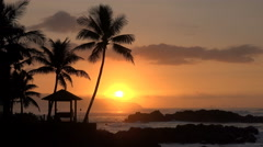 Tropical ocean sunset with waves and palm tree silhouette - Hawaii coast - stock footage