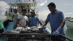 Fishermen Putting Fish Catch On Boat At Fishing Docks Stock Footage