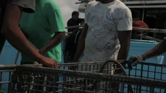 Fishermen Discharged Fresh Tuna Into The Container Stock Footage