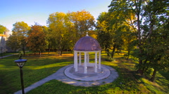 The bower or gazeebo in the grassy yard Stock Footage