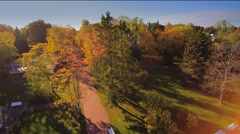 Big trees on the park in Haapsalu Estonia Stock Footage