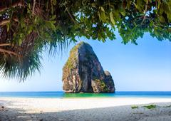 Sandy beach with rock and tropical plants near Phuket island - stock photo
