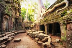 Angkor Wat Cambodia. Ta Prom Khmer ancient Buddhist temple in jungle forest.  Stock Photos