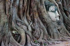 Famous Thailand landmark of buddha head in tree roots Stock Photos