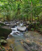 Creek flows through rocks and stones in tropical forest Stock Photos