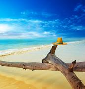 Scenery tropical landscape at sunny day. Travel creative concept background w - stock photo