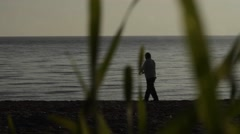 Man fished an octopus in the early hours of the morning, seen through the grass Stock Footage