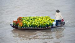 Flowers for sale from boat in Mekong delta Cai Rang floating market in Can Th - stock photo