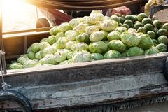 Boat full of cabbages in Mekong delta Cai Rang floating market in Can Tho Vie Stock Photos