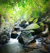 Big wet stones of mountain river flowing through forest Stock Photos