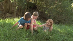 Children play fighting in grass - stock footage