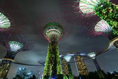 Night view of Supertree Grove at Gardens by the Bay in Singapore Stock Photos