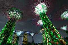 Stock Photo of Popular landmark illuminated Supertree Grove Gardens by the Bay in Singapore