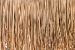Thatch roof background, hay or dry grass background Stock Photos