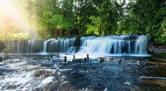Sunlight through trees and waterfall in tropical forest Stock Photos