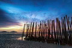 Low tide and bamboo sticks sunrise abstract art photography Stock Photos